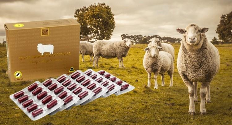 [Review] Viên uống nhau thai cừu Sheep Placenta 50000mg từ người dùng