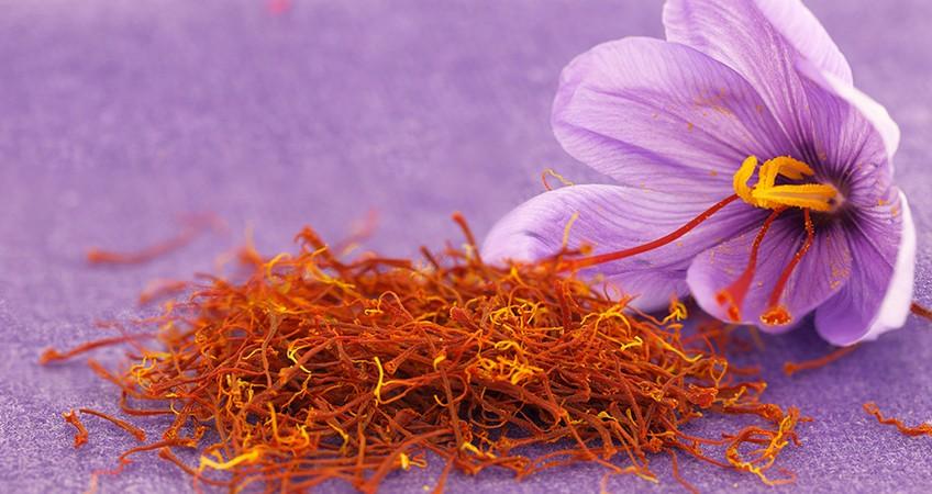 10 công dụng của Saffron - nhụy hoa nghệ tây