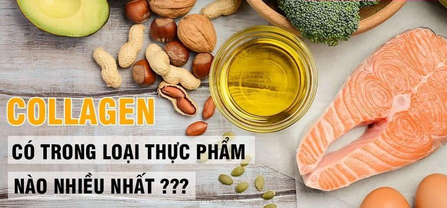 Collagen có trong thực phẩm nào? Top thực phẩm giàu collagen nhất