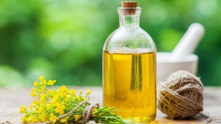 tinh dầu hoa anh thảo chứa GLA