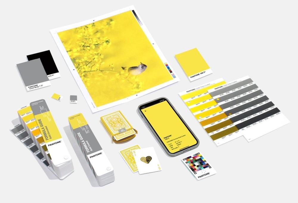 Màu vàng và xám là màu sắc chủ đạo trong mọi lĩnh vực của năm 2021 - Ảnh Pantone
